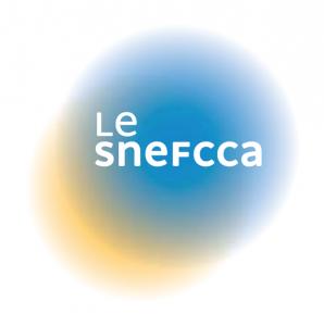 Bureau d'étude REGELMANN - membre SNEFCCA